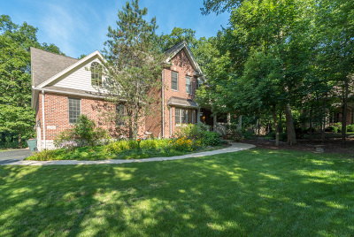 New Lenox Single Family Home For Sale: 239 Hampshire Court