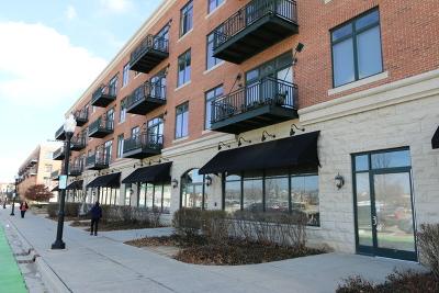 Aurora Condo/Townhouse New: 160 South River Street #311