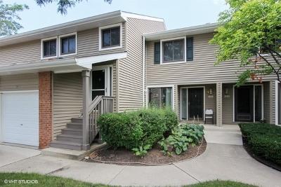 Buffalo Grove Condo/Townhouse New: 1095 Hidden Lake Drive