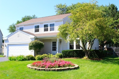 Lake Zurich Single Family Home For Sale: 9 Margate Court