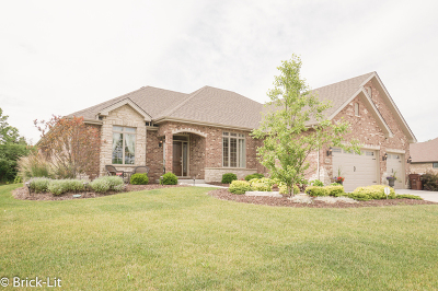 Mokena Single Family Home Contingent: 11901 Heinecke Drive