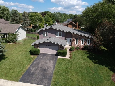 Single Family Home For Sale: 11s071 West Street