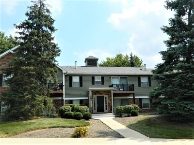 Naperville Condo/Townhouse New: 1308 McDowell Road #104