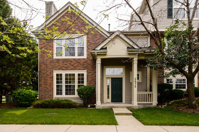 Arlington Heights Condo/Townhouse New: 2673 North Greenwood Avenue