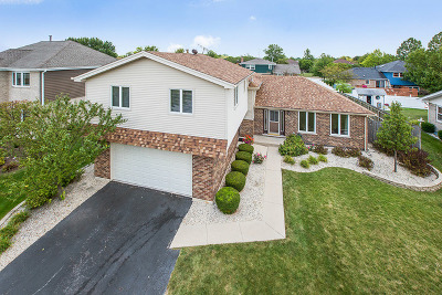 Tinley Park Single Family Home Contingent: 17707 Pheasant Drive