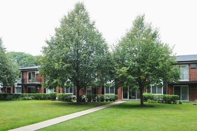 Arlington Heights Condo/Townhouse New: 1106 North Dale Avenue #2G