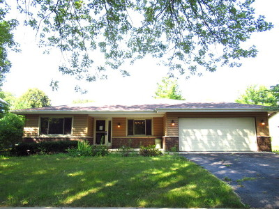 Naperville Single Family Home New: 1119 Langley Circle