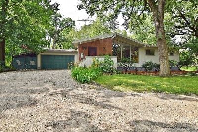 St. Charles Single Family Home For Sale: 36w235 Silver Glen Road
