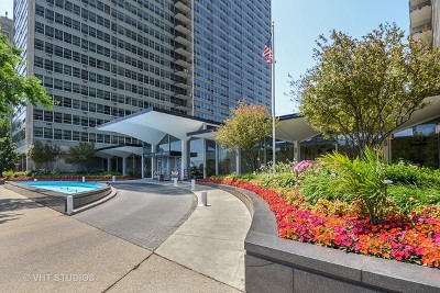 Cook County Condo/Townhouse For Sale: 3550 North Lake Shore Drive #2405