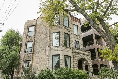 Chicago Condo/Townhouse New: 615 West Briar Street #3