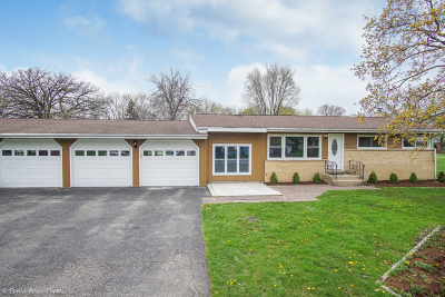Lake Zurich Single Family Home For Sale: 22374 West Sturm Street