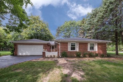 Palatine Single Family Home For Sale: 840 South Benton Street