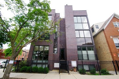 Cook County Condo/Townhouse New: 2047 North Leavitt Street #2S