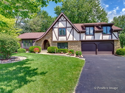 Lemont Single Family Home Contingent: 19w450 Deerpath Lane