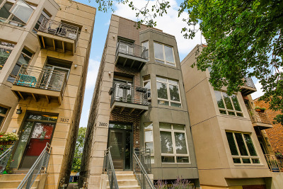 Cook County Condo/Townhouse New: 3850 West Wrightwood Avenue #3