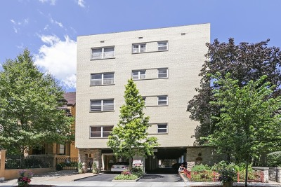 Cook County Condo/Townhouse New: 530 West Barry Avenue #2H