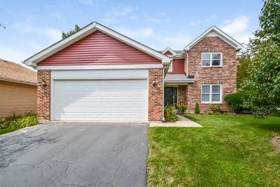 Mundelein Single Family Home New: 104 Michael Avenue