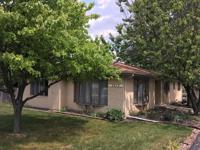 Downers Grove Single Family Home For Sale: 7217 Main Street