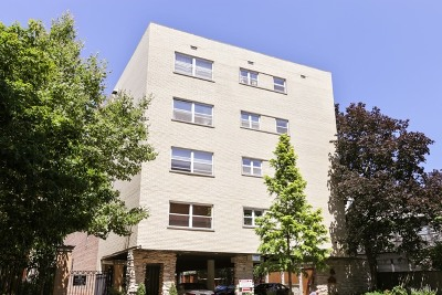 Cook County Condo/Townhouse New: 530 West Barry Avenue #2G