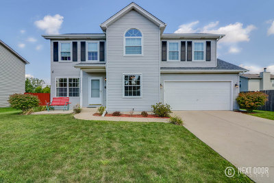 Plainfield Single Family Home New: 5207 Pine Trails Circle