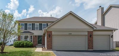 Hampshire Single Family Home For Sale: 1640 Fallbrook Drive