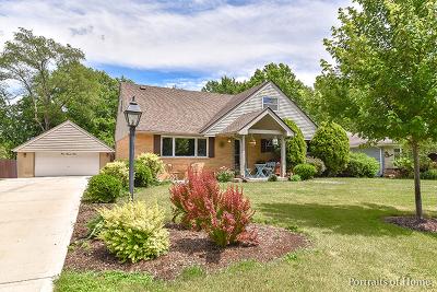 Glen Ellyn Single Family Home New: 1n575 Park Boulevard