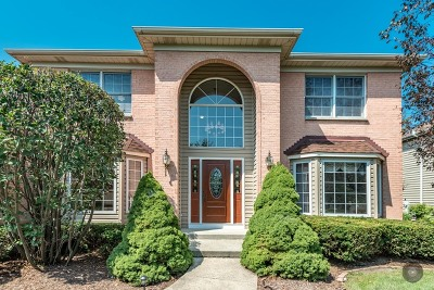 Naperville IL Single Family Home New: $449,500