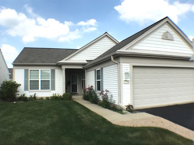 Huntley Single Family Home New: 11742 Sunderlin Drive