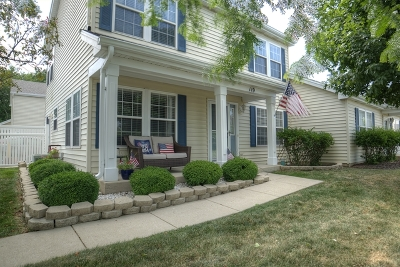 Oswego Condo/Townhouse New: 119 Waterbury Circle