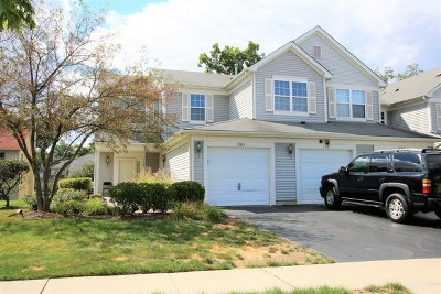 Carpentersville IL Condo/Townhouse Listing Sold: $137,500
