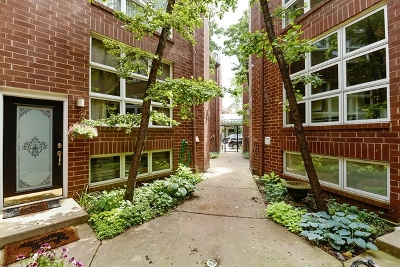 Cook County Condo/Townhouse New: 1918 North Halsted Street #6