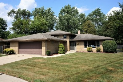 South Holland Single Family Home Contingent: 17217 Louis Court