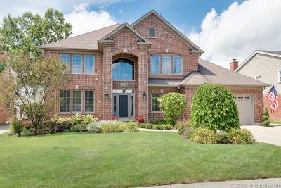 Elmhurst Single Family Home New: 550 South Berkley Avenue