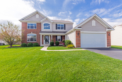 McHenry Single Family Home New: 6501 Donegal Lane