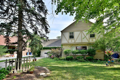 Elmhurst Single Family Home New: 369 East Parkview Avenue