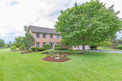 St. Charles Single Family Home For Sale: 39w086 Harty Court