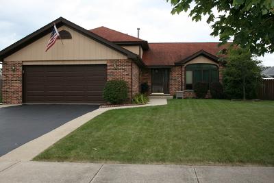 Plainfield Single Family Home New: 16509 Edgewood Drive