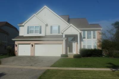 Round Lake Single Family Home New: 966 South Tremont Lane