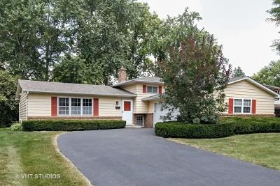 Naperville IL Single Family Home New: $300,000