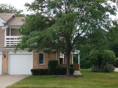 Buffalo Grove Condo/Townhouse New: 1047 Courtland Drive #1047