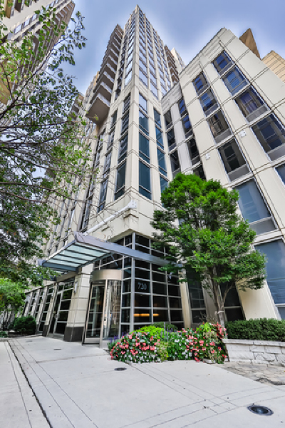 Chicago Condo/Townhouse New: 720 North Larrabee Street #1509