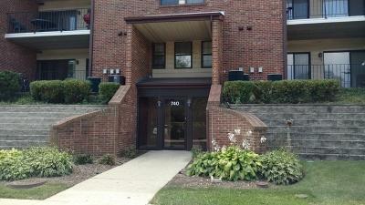 Buffalo Grove Condo/Townhouse New: 740 Weidner Road #207