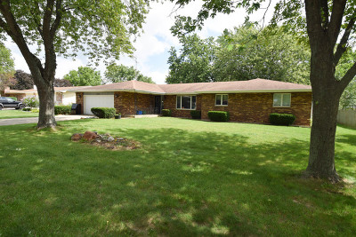 Plainfield Single Family Home New: 16941 South Plainsman Circle