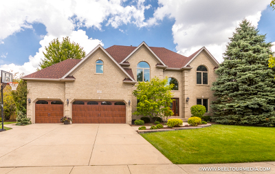 Naperville Single Family Home New: 4264 Colton Circle