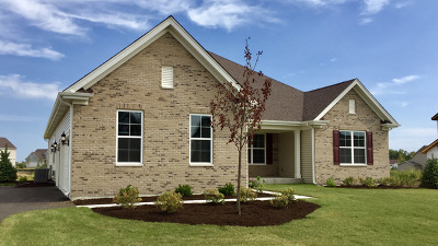 Aurora Single Family Home New: 1407 Star Grass Circle