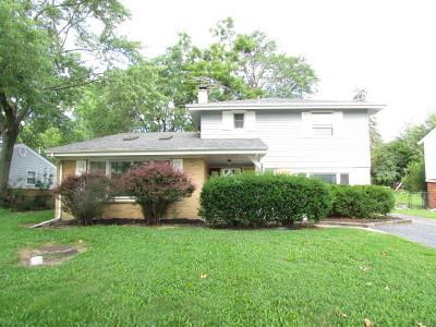 Palatine Single Family Home New: 616 South Cedar Street