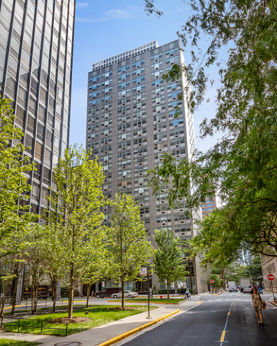 Cook County Condo/Townhouse New: 253 East Delaware Place #7D