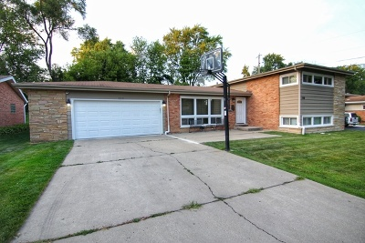 Palatine Single Family Home New: 338 West Pleasant Hill Boulevard