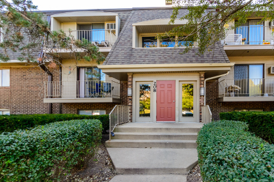 Naperville Condo/Townhouse New: 208 East Bailey Road #C