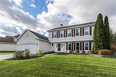 Bartlett IL Single Family Home New: $354,900